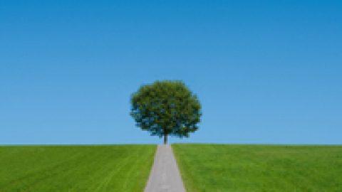 Umweltschutz schafft Arbeit für zwei Millionen