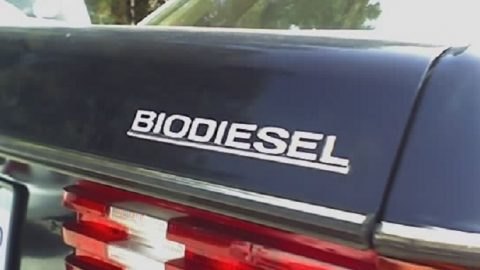 Zu teuer und ungeliebt: Biodiesel-Absatz bricht ein