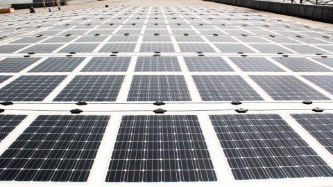 Rahmenfreie PV-Folienmodule auch für flache Dächer