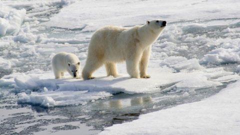 10 Tipps für bessere Klimakommunikation