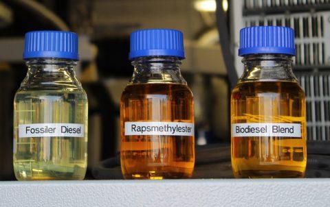 Neue Biokraftstoffe: Nur Chancen zu Luft und See?