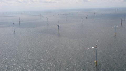 Energieverbrauch 2015: Erneuerbare legen am stärksten zu
