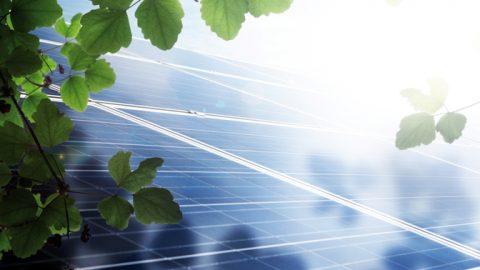 Laute Stimme für die Energiewende von unten