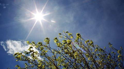 Speicherung von Strom aus Wind und Sonne – der Stein der Weisen?