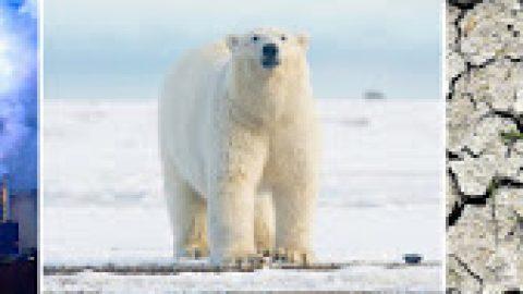 #COP21Paris #Blogchallange Hilferuf von Klima und Natur