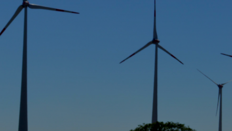 Mehr dezentrale Stromerzeugung – Tennet bereitet sich auf Rekord Wind vor