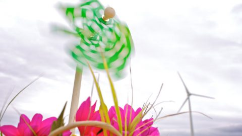 Kind und Kegel aufgepasst: am 21. September geht es zum WindFest in der Region Hannover