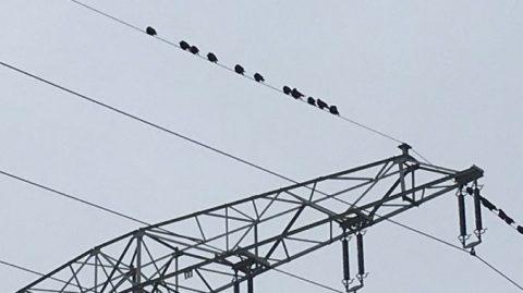 Kosten für Stromnetzeingriffe schnellen nach oben