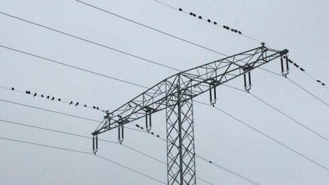 Neue Netzentgeltstruktur stößt auf Kritik