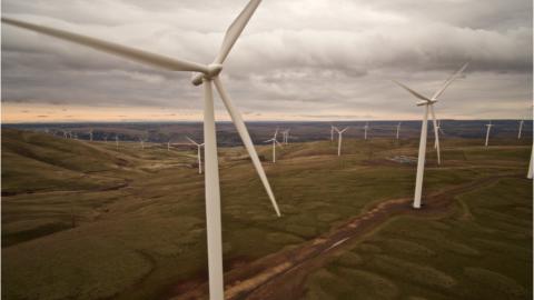 Erneuerbare Energien: Privatpersonen sind die wichtigsten Investoren