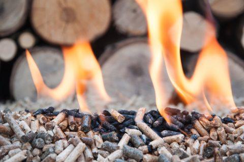 Heizen mit Holz: klimaschonend, kostengünstig und preisstabil