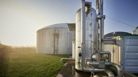 Biogas: Zukauf gegen den Tre